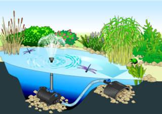 Vijver en koi fonteinpompen nautilus for Vijver zonder pomp